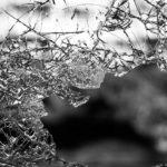glass-984457_192pixabay-smash